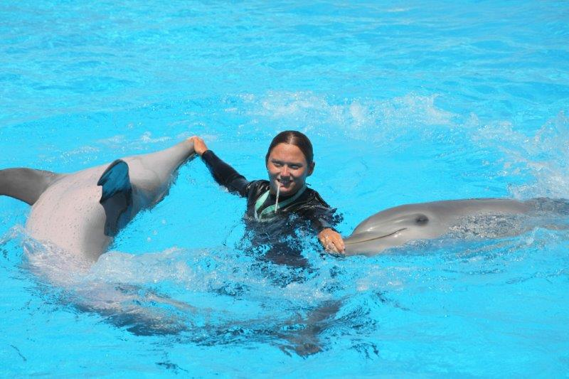 Malta marine park bagno coi delfini malta